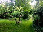 A kert és az udvar - Őrségi Szállás és Vendégház
